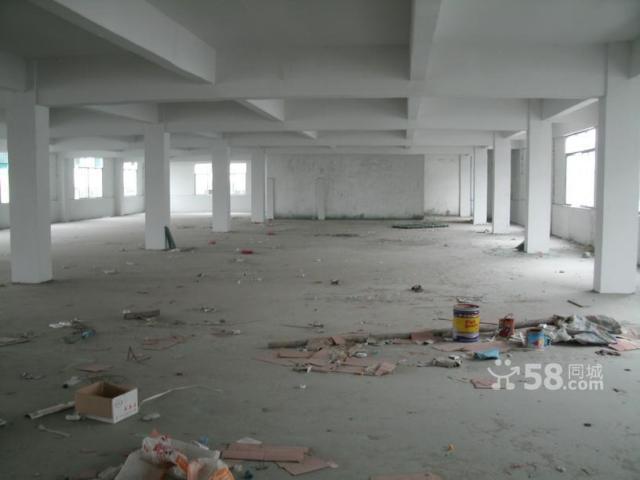 顺德工业区10000平方标准厂房出租-图(3)