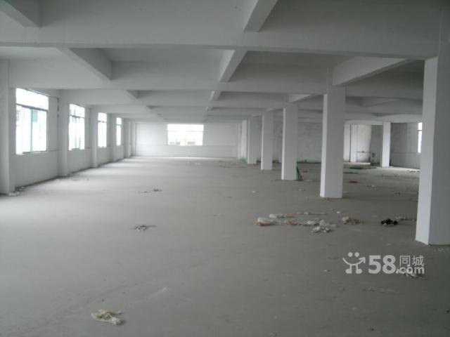 顺德工业区10000平方标准厂房出租-图(4)