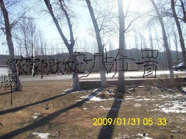 阜新县东20公里101国道1000平房院急售可赠地-图(1)