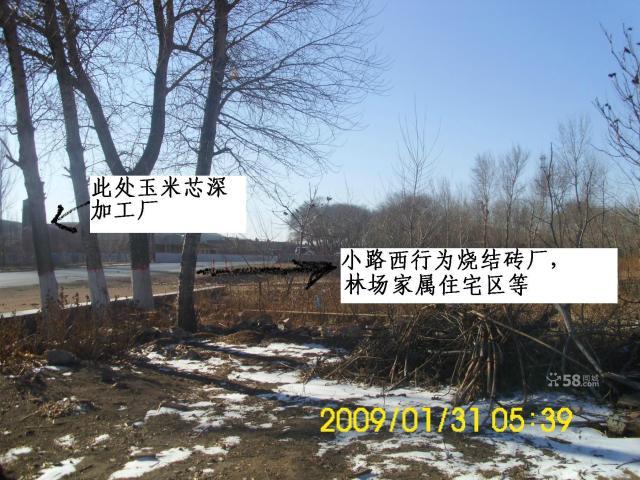 阜新县东20公里101国道1000平房院急售可赠地-图(5)