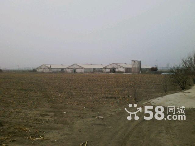 牧业小区出售-图(3)