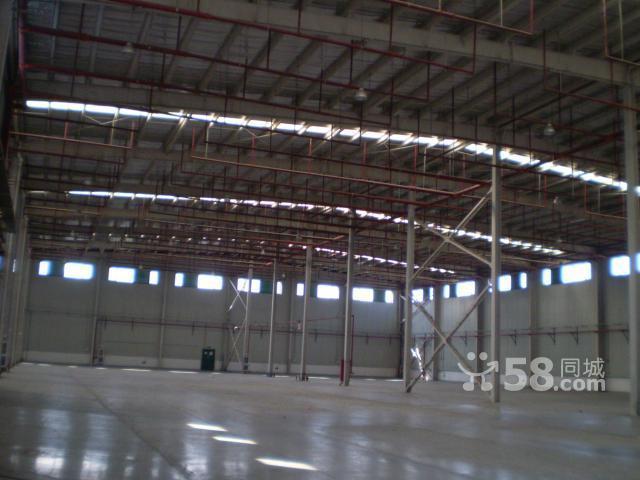 层高10米,标准高卸货平台,钢结构,带消防烟感喷淋,10多个电动卷帘门