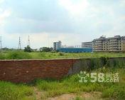 出租10亩的工业地在大路边通水通电通路-图(1)