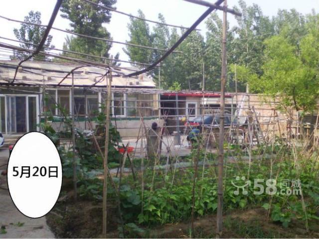 农村小院出租