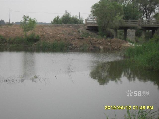 个人低价出售养殖厂带鱼池可作度假村-图(3)