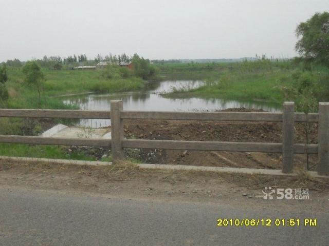 个人低价出售养殖厂带鱼池可作度假村-图(4)