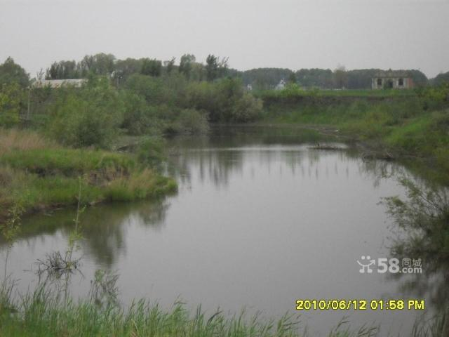 个人低价出售养殖厂带鱼池可作度假村-图(5)
