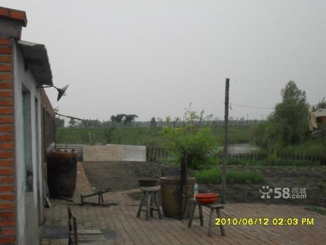 个人低价出售养殖厂带鱼池可作度假村-图(6)