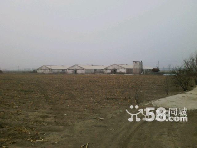 牧业小区出售-图(4)