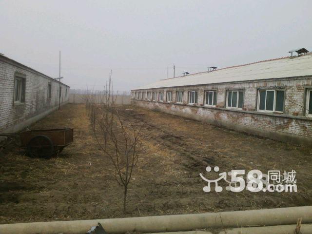 牧业小区出售-图(7)