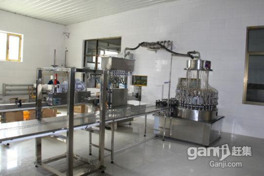 厂房整体转让、租赁、承包、联营-图(3)