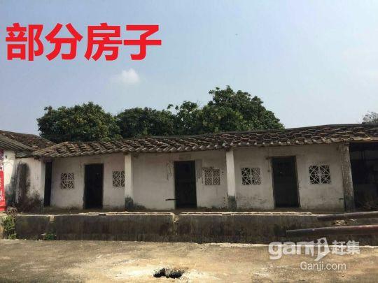 北海福成镇2200平米厂房招租(附今年的图)-图(2)