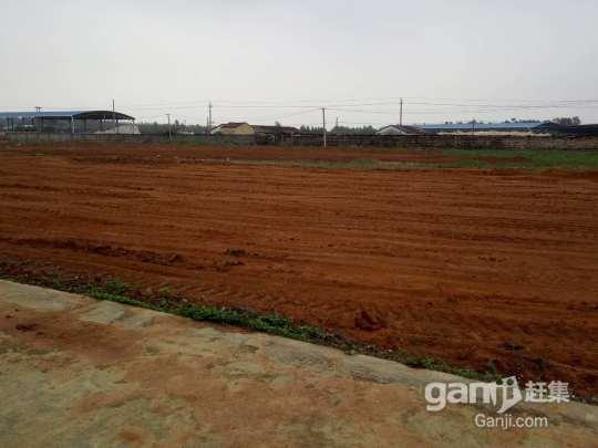 南康镇工厂带办公楼出租-图(3)