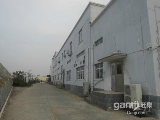 广西北海合浦县大量厂房、生产车间、仓库、冷冻库及配套出租-图(1)