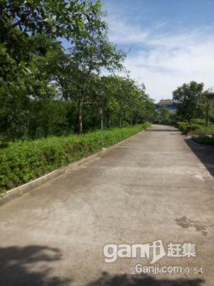 广西北海合浦县大量厂房、生产车间、仓库、冷冻库及配套出租-图(2)