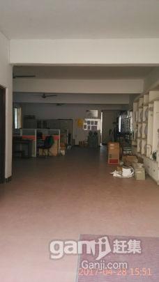 大面积仓库出租-图(6)