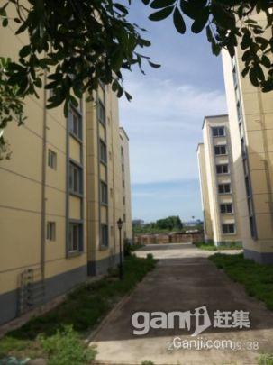 广西北海合浦县大量厂房、生产车间、仓库、冷冻库及配套出租-图(6)