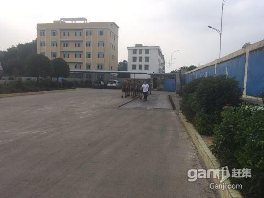 工厂仓库场地及办公大楼岀租-图(3)