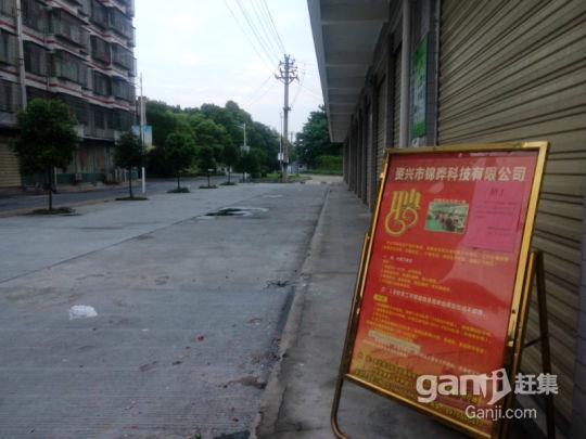 1楼临街厂房仓库门面出租-图(3)