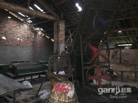 雅安名山区茶厂出租,面积约400平米,周围地势好可以扩建-图(4)
