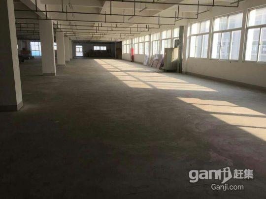 新区出租标准厂房,可开公司培训班,车间,仓库等有意电联-图(1)