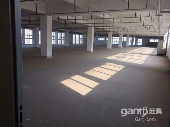 新区出租标准厂房,可开公司培训班,车间,仓库等有意电联-图(2)