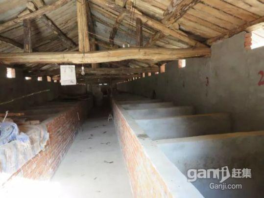 【6图】豪猪养殖场整体出售-凤县厂房-宝鸡厂房出租网