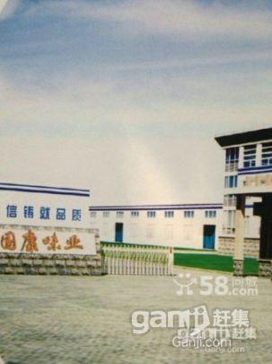 岳阳康王工业园黄金地段高标准厂房土地合作或出售-图(1)