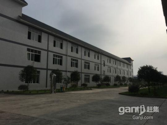 厂房、办公大楼整体出售-图(3)