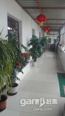(出售)醋厂 独门独院1000平米 设备齐全 客户稳定-图(5)