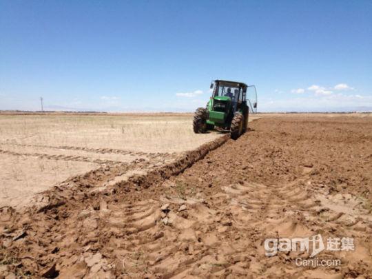 新疆喀什交通便利10000亩肥沃良田有机农业超低价转让-图(7)