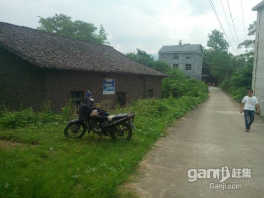 县城郊区农家房出出租-图(4)