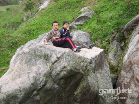 水库山石景出租-图(4)