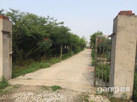 江苏镇江丹阳农用地林地整体部分转让都行-图(3)