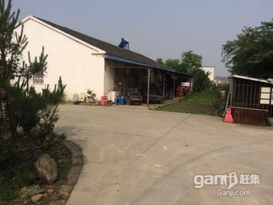 江苏镇江丹阳农用地林地整体部分转让都行-图(4)