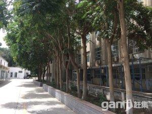 吐鲁番市 办公大楼仓库招租-图(4)