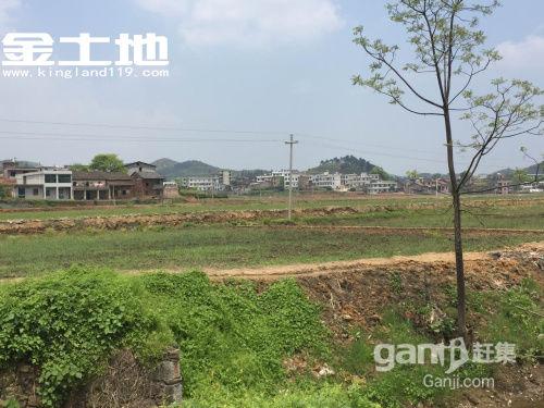 湖南郴州永兴上万亩土地出租-图(3)