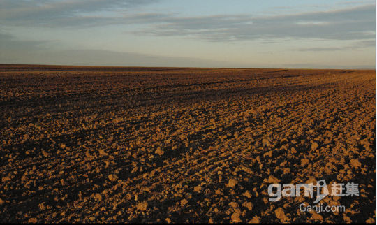 吐鲁番艾丁湖200亩土地低价出售-图(1)