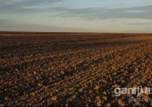 吐鲁番艾丁湖200亩土地低价出售