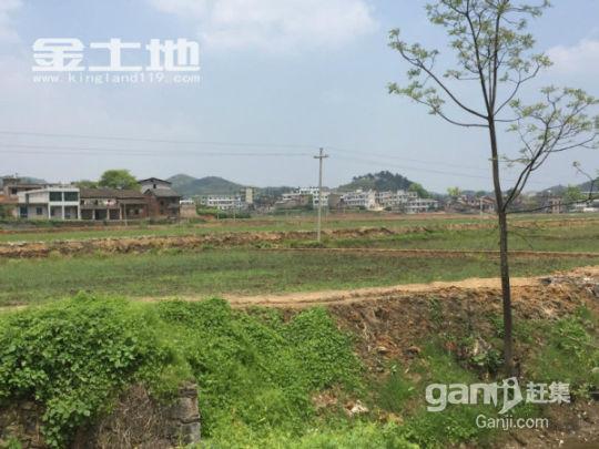 湖南郴州永兴上万亩土地出租-图(2)