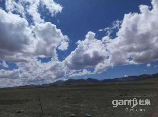 急转鄂托克旗阿尔巴苏三千亩优质草场-图(3)