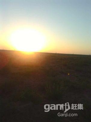 急转鄂托克旗阿尔巴苏三千亩优质草场-图(5)