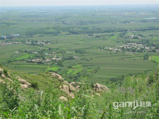 闾山300亩山地带果园 位置好开发价值高-图(1)