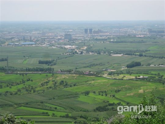 闾山300亩山地带果园 位置好开发价值高-图(7)
