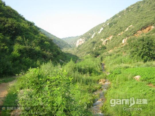闾山300亩山地带果园 位置好开发价值高-图(8)