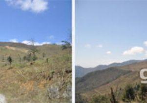 四川雅安芦山县18000亩农用地转让
