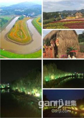 重庆花木世界七色花水世界主题乐园招商-图(7)