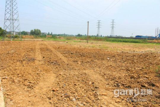 安庆白泽湖乡300亩农业耕地出租-图(1)