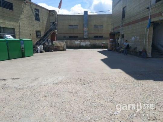 龙岗中心城原房东钢构厂房,1700平方8米高-图(2)