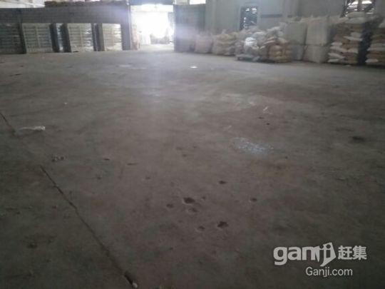 龙岗中心城原房东钢构厂房,1700平方8米高-图(3)